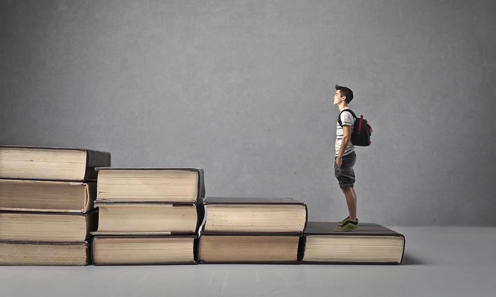 Reform and the senior secondary school