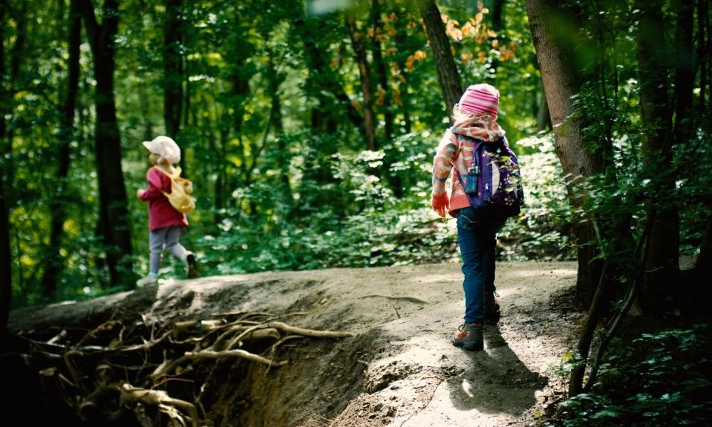 Nature Pedagogy - inside, outside and beyond
