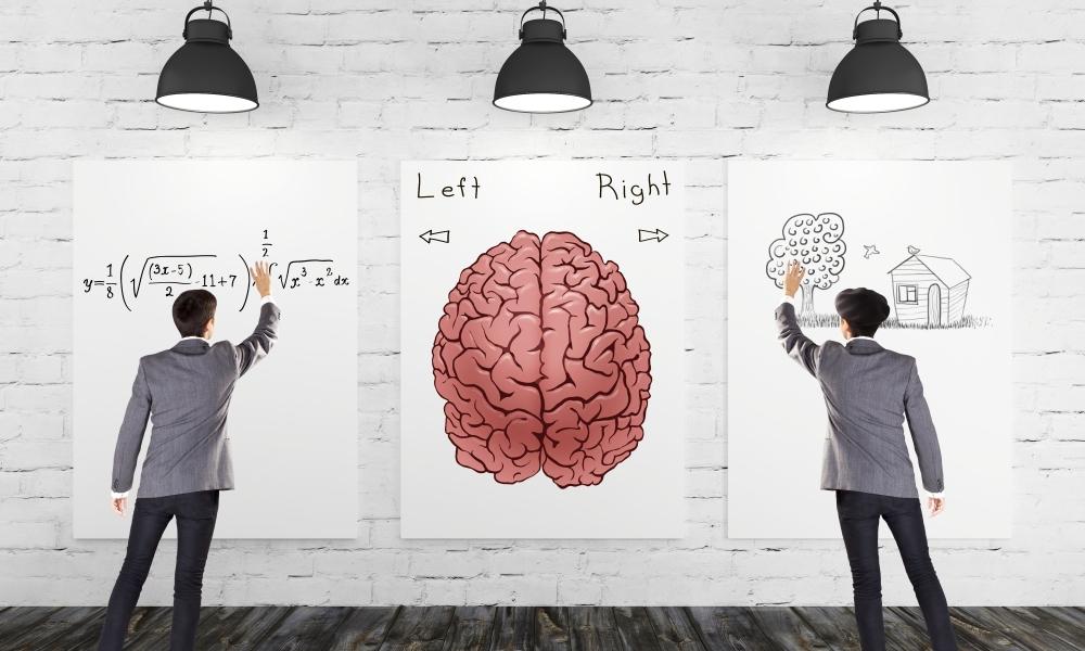 Lost in translation – shattering neuromyths