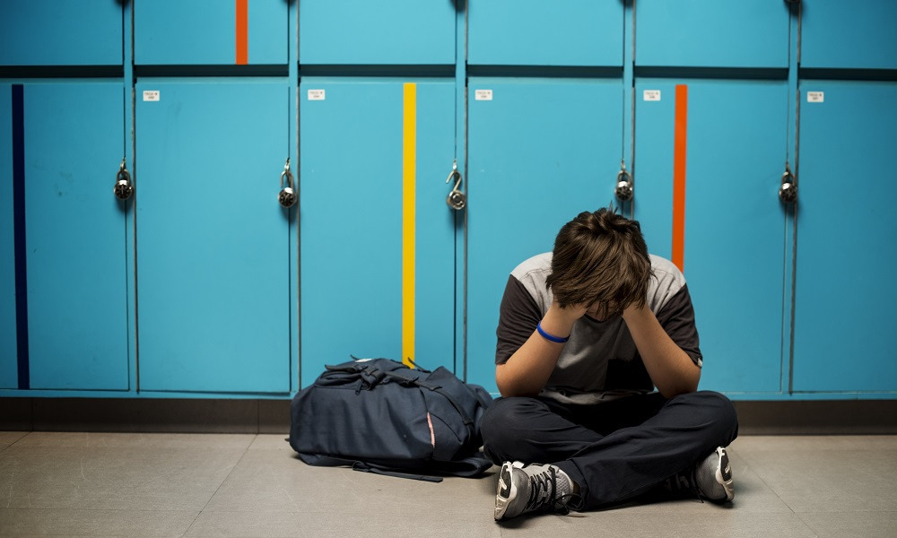 School bullying victims' perceptions of perpetrators