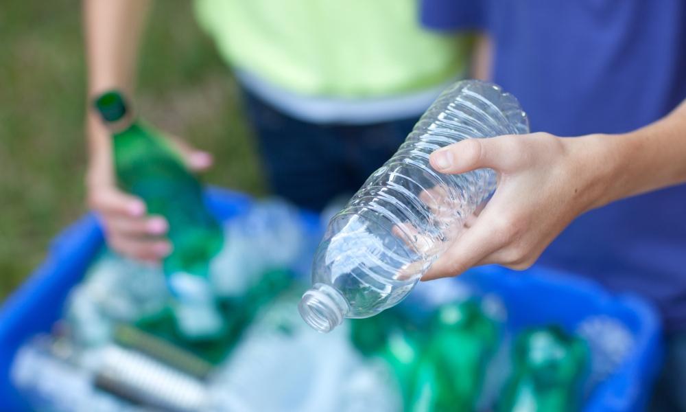 Students lead school sustainability efforts