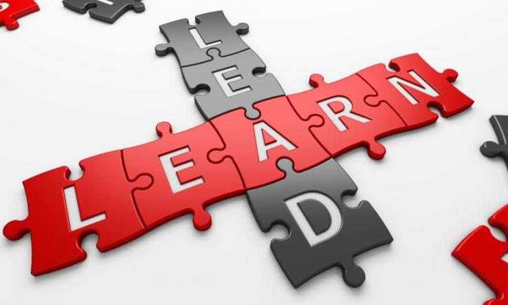 Succession planning – 'contributive leadership'