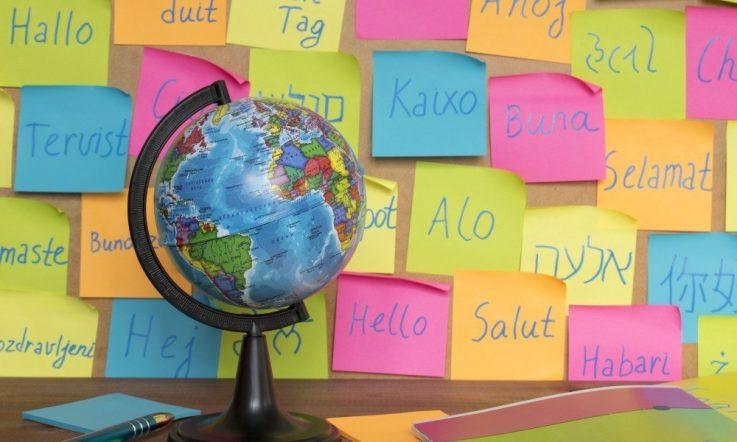 Valuing multilingual students' skills