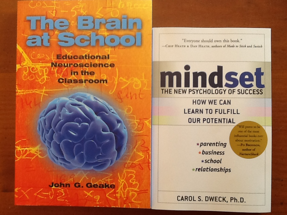 Britt Gow reviews two books she thinks are worthwhile to a teacher's professional learning.