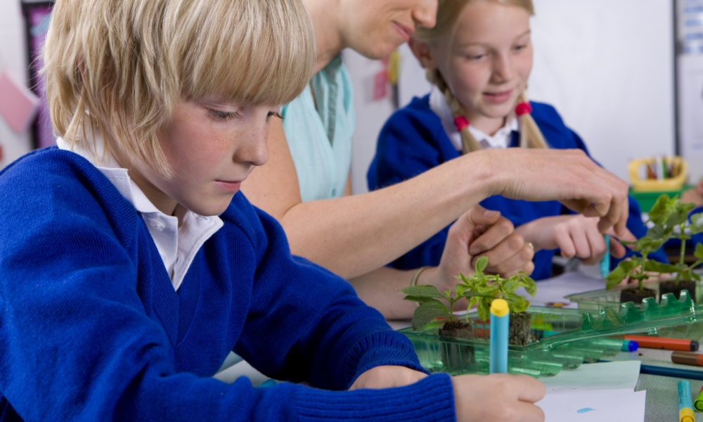 STEM learning – international best practice